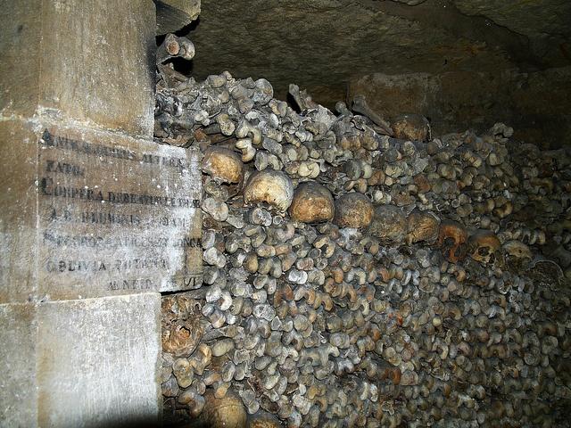 Ossements dans les catacombes de Paris